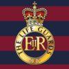 Life Guards Sticker