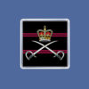 Royal Army Physical Training Corps Magnet