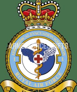 RAF 1 Aeromed Evac Squadron