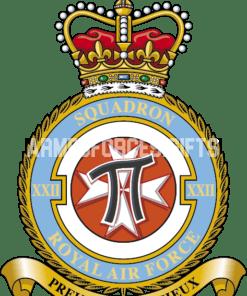 RAF 22 Squadron