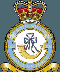 RAF 32 The Royal Squadron