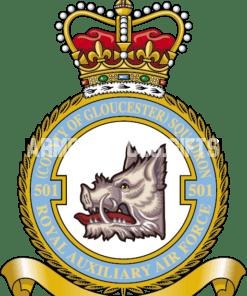 RAF 501 Aux Squadron
