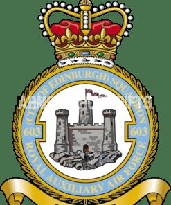 RAF 603 Aux Squadron