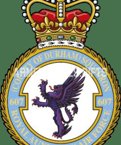 RAF 607 Aux Squadron