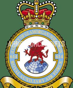 RAF 614 Aux Squadron