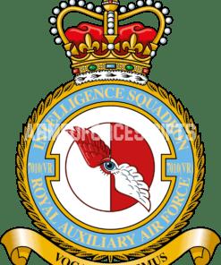 RAF 7010(vr) Intelligence Squadron