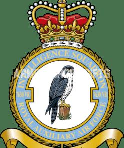 RAF 7630 Aux Squadron